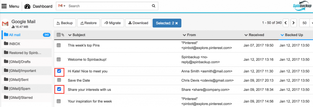 Spinbackup Google mail recover selected