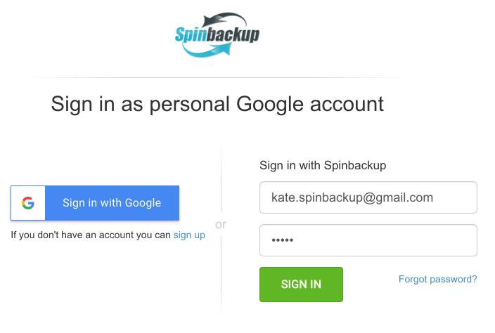Spinbackup sign in Google
