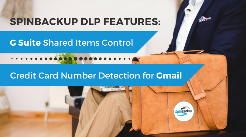 Spinbackup DLP features