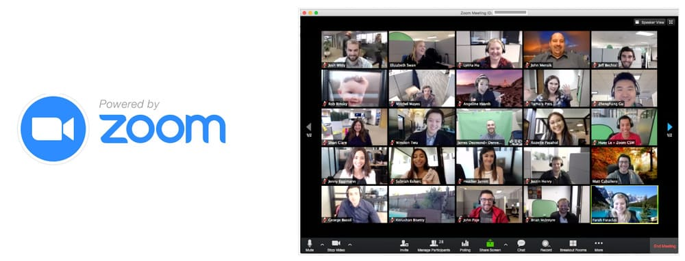 Online collaboration tool: Zoom